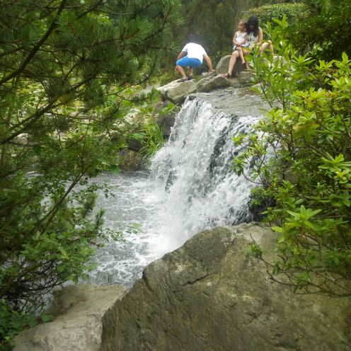 Gruga Park waterfall in summer, Essen