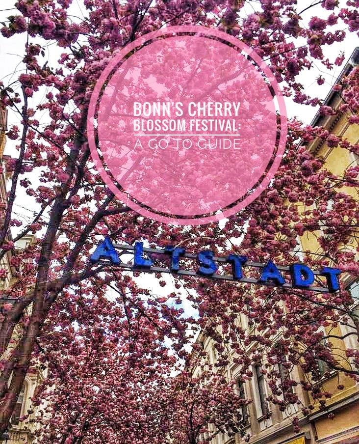Bonn's cherry blossom festival.jpeg