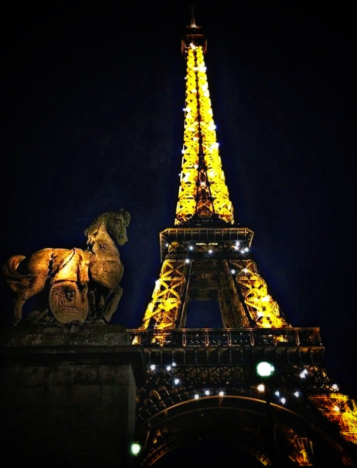 One great photo at night of the Eiffel Tower. The rest are semi decent only.