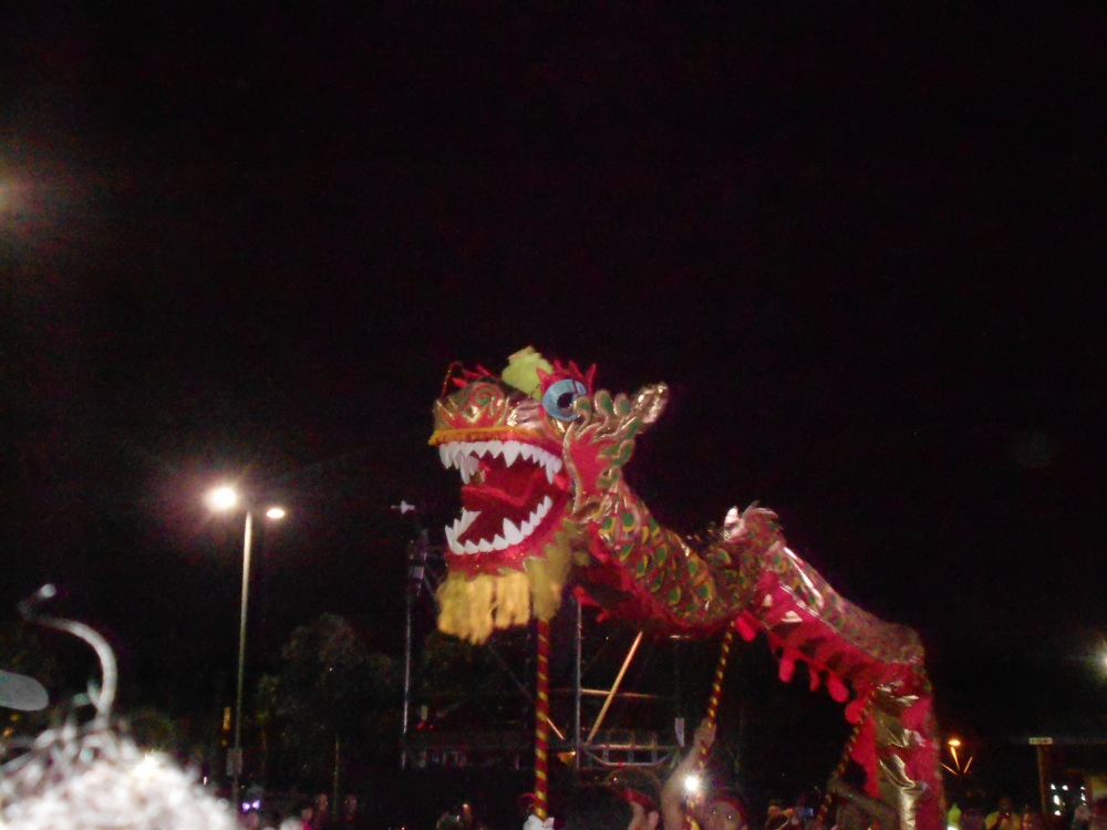 The Chinese community contributed to Cape Town Carnival
