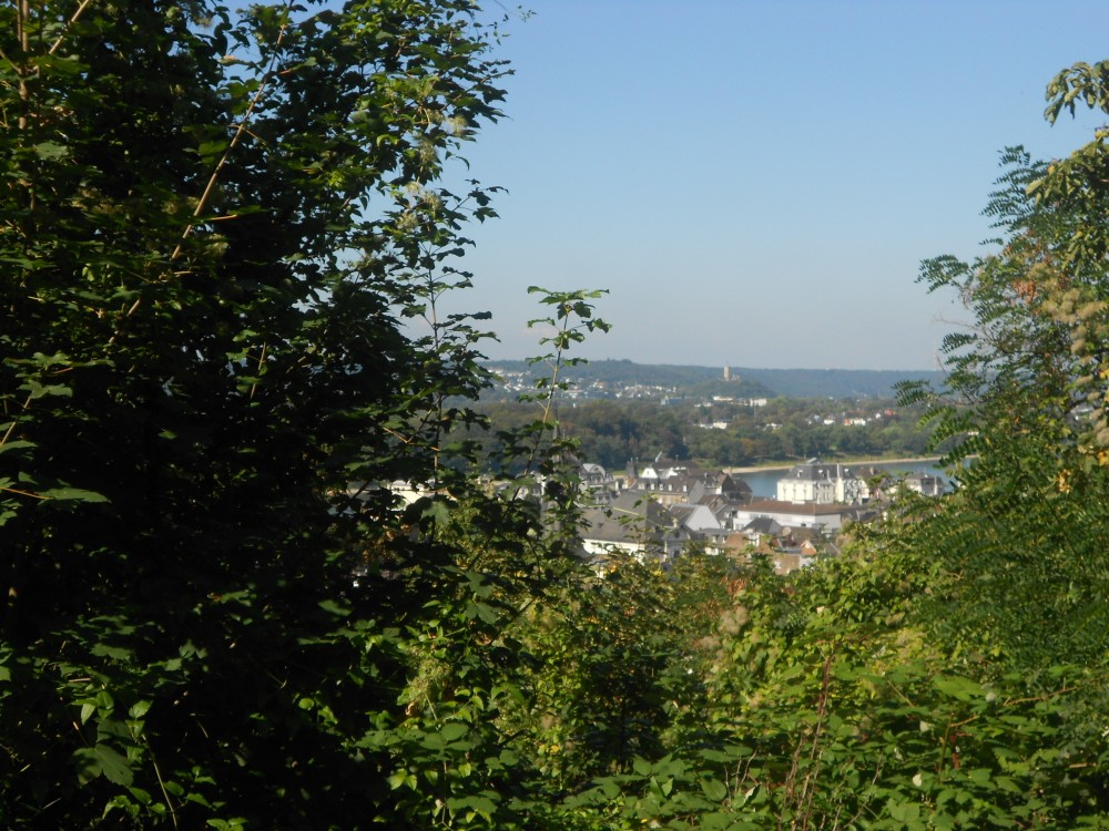 View from the hiking trail to Drachenburg Castle