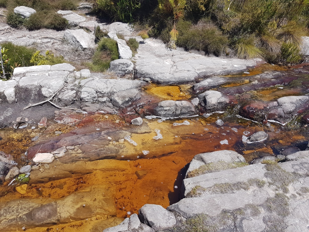 Stream along Elephants an't Eye hiking trail
